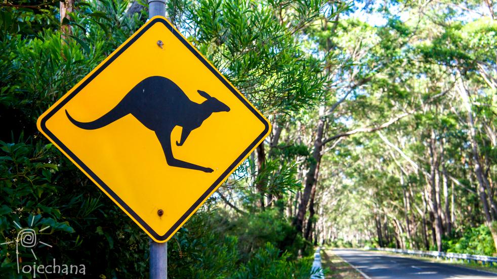 podróżowanie po Australii