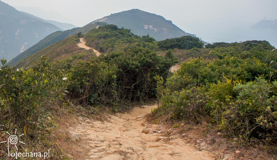 Dragon's Back Trail