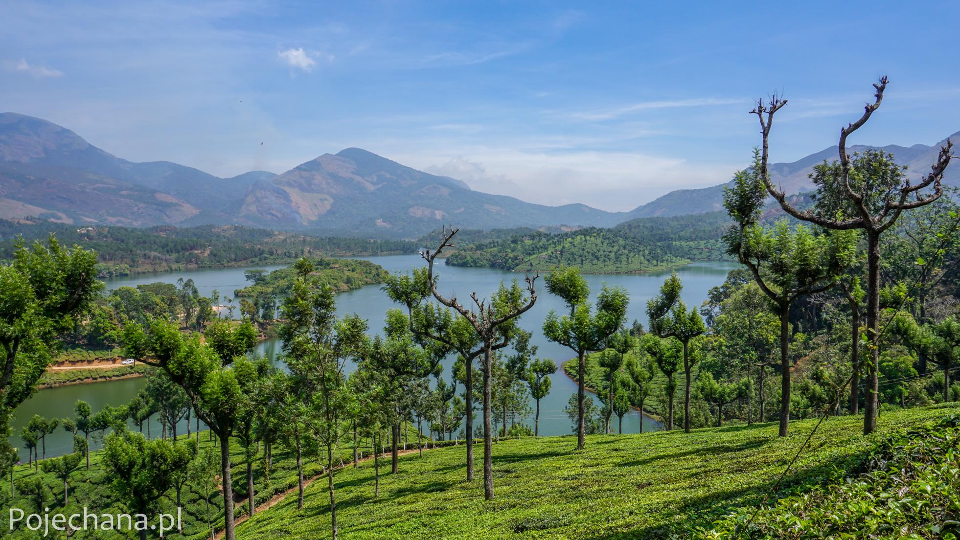 Munnar, Ghaty Zachodnie - atrakcje Kerali
